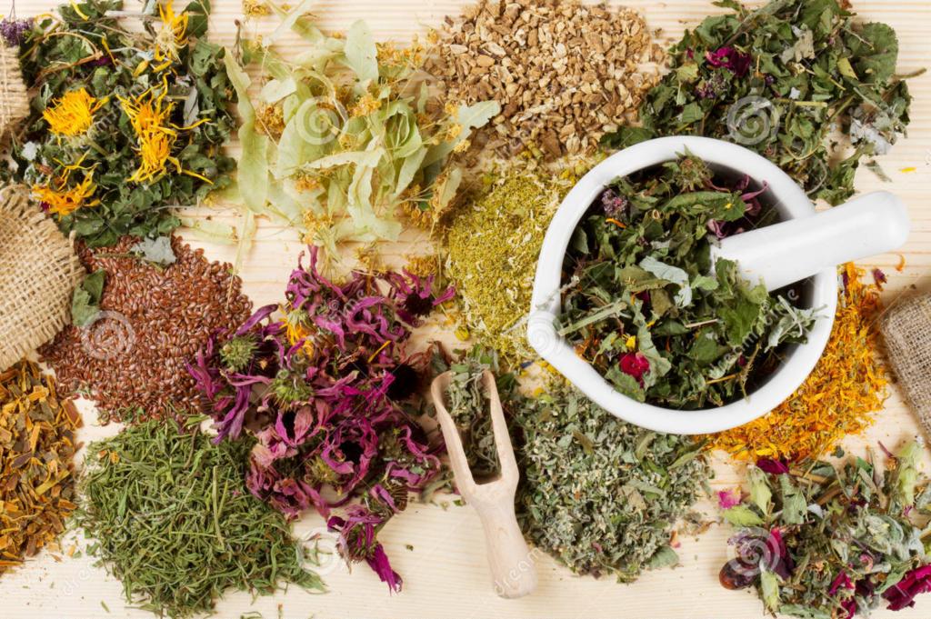 Herbal Adjuvants in the Treatment of ADHD